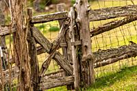 A rough made fence with chicken wire.