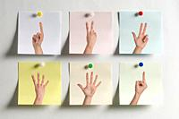 Five colorful Post It messages fixed to the wall with images of fingers indicating numbers and one with the middle finger.