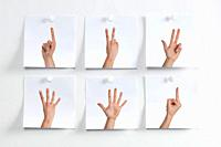 Five white Post It hanging on the wall with images of fingers indicating numbers and one with the middle finger.