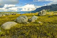 View over Vietas in Stora sjöfallets national park, with big rocks and sky reflecting in the lake, Laponia, Gällivare county, Swedish Lapland.