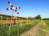 Narrow Gauge Train in Mikoszewo, Pomeranian Voivodeship, Poland.