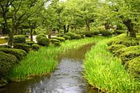 Kenrokuen garden,Kanazawa,Japan,Asia.