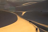 tourists on sanddunes in desert in Morocco