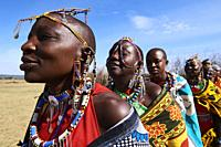 Group of Massai women singing and dancing in traditional dress and adorned with bead work, Masai Mara National Reserve, Kenya.