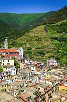 The town of Vernazza and surrounding vineyards from Doria Castle, Cinque Terre, Liguria, Italy.
