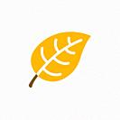 Yellow leaf color icon with shadow. Flat vector illustration