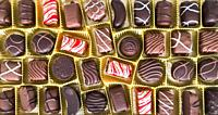 Close-Up Of Assorted Chocolate Pralines.