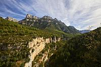 Pyrenean forest and mountains in Añisclo Canyon, Ordesa and Monte Perdido National Park, Huesca province, Aragon (Spain)