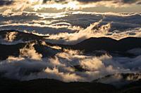 Foggy sunrise overlooking Pisgah National Forest on Blue Ridge Parkway, near Brevard, North Carolina, USA.