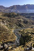 Colca Canyon, Andes mountain,Arequipa, Perú,South America.