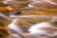 Autumn colors are reflected in the waters of the Raritan River in Ken Lockwood Gorge Wildlife Management Area.
