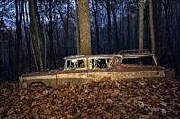 Abandoned 1957 Rambler Custom Cross-Country Station Wagon - Dupont State Recreational Forest, North Carolina, USA.