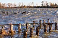 Very strong gale force winds whipping up waves on a normally sheltered inlet in Steveston British Columbia Canada.