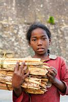 girl selling pine firewood on the road, Antsirabe, Central Madagascar