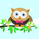 Male owl on a spring day. Vector illustration
