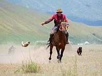 Kyrgysz hunting dog, Taigan, during a competition. Folk and Sport festival on the Suusamyr plain commemorating Mr Koshomkul, a sportsman and folk hero...