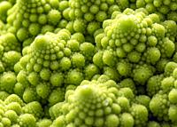 Romanesco, vegetable with a repeated construction called fractal geometry.