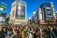 Shibuya Crossing, the busiest intersection in the World, Tokyo, Japan, Asia.