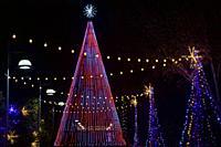 Illuminated Christmas Tree at Winter Lights event at the North Carolina Arboretum - Asheville, North Carolina, USA.