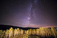 Green Trees Woods In Park Under Night Starry Sky from terrace at Gredos state run hotel Avila Spain.