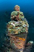 Buddha statue on sea bed covered in tunicates (Tunicata Subphylum), Coral Garden dive site, Seraya, Kubu district, Karangasem, Bali, Indonesia, Indian...