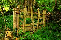Old farm gate on the Los Arrudos route. Caleao . Natural Park Redes. Asturias.