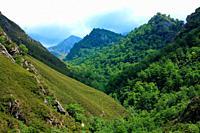 Landscape on the Los Arrudos route. Natural park Redes. Asturias.