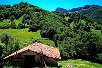 Landscape on the Brañagallones route. Natural park Redes. Asturias.
