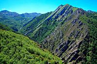 Landscape on the Brañagallones route over the Monasterio river. Natural park Redes. Asturias.