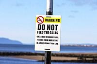 Warning sign stating not to feed the gulls because of aggression, Irvine, Ayrshire, Scotland.