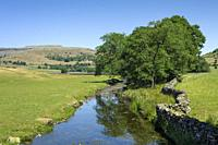 Austwick Beck in the Yorkshire Dales National Park near Austwick, North Yorkshire, England.