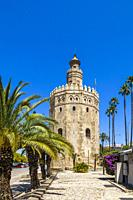 The Torre del Oro or gold tower built in the 13th century (1220-1221) on the Guadalquivir river in Seville Spain.