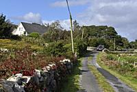 country road, Lettermore island, west coast, County of Galway, Connemara, Republic of Ireland, North-western Europe.
