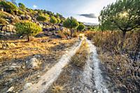 The stream pathway in Cadalso de los Vidrios. Madrid. Spain. Europe.