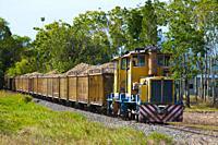 Sugar cane train near Mossman, North Queensland, Australia
