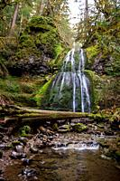 Scenic view of Spirit Falls, a waterfall in the Umpqua National Forest in Oregon. This hiking trail takes you about a mile into a slot canyon to see t...