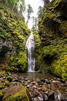 Scenic view of Pinard Falls, a waterfall in the Umpqua National Forest in Oregon. This hiking trail takes you about a mile into a slot canyon to see t...