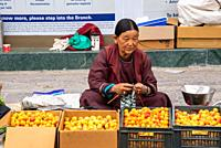 woman selling abricots at streetmarket in Leh, Ladakh, India