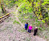 Three women pause to photograph a Canada Goose with their smart phone on a trail in Ontario, Canada