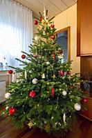 Oberhausen, Sterkrade, Christmas, Advent season, festive decorated Christmas tree in a living room, Christmas glitter balls, Christmas stars, Germany,...