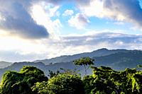 Topes de Collantes, Trinidad, Republic of Cuba, Caribbean, Central America.