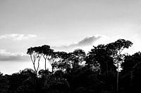 Landscape of Topes de Collantes, Trinidad, Republic of Cuba, Caribbean, Central America.