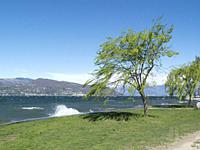 Waves and strong winds on Lake Maggiore, Ispra, Varese, Lombardy, Italy.