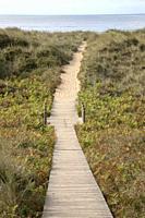 Wooden Footpath and Sea at Xago Beach; Asturias; Spain.
