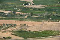 campo de cultivo, Ausejo, La Rioja , Spain, Europe.