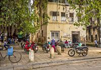 Zanzibar. men socialize in the shade oif a large vine-covered treee. Motorcycle taxis wait for a passenger, food and drink barrows serve hot food, fru...