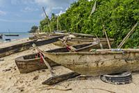 Zanzibar. Old dhow-styled sailing canoes pulled up above the high-water mark on the beach. Used for fishing.