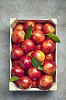 Blood oranges and orange tree leaves in a wooden box on a grey textured background.