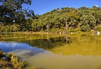 Water reservoir in nature. Natural Park Sierra de Grazalema, Cadiz province, southern Andalusia. Spain Europe.