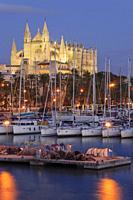 Catedral de Mallorca desde el muelle de la Riba , siglo XIII, Monumento Histórico-artístico, Palma, mallorca, islas baleares, españa, europa.